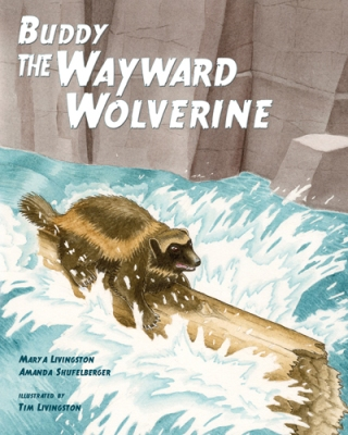 -- Buddy, the Wayward Wolverine -- by Mary A Livingston and Amanda Shufelberger. Illustrated by Tim Livingston.  2013 Red Tail Publishing